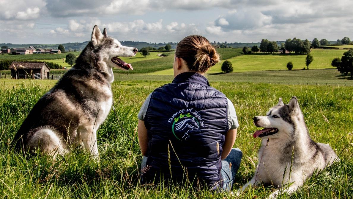 Essence of Life, gamme de produits de soins naturels pour chiens et chats